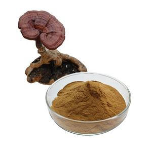 High quality Ganoderma lucidum Extract Polysaccharide powder Reishi Extract reishi mushroom extract 10% 5% 30% Polysaccharide