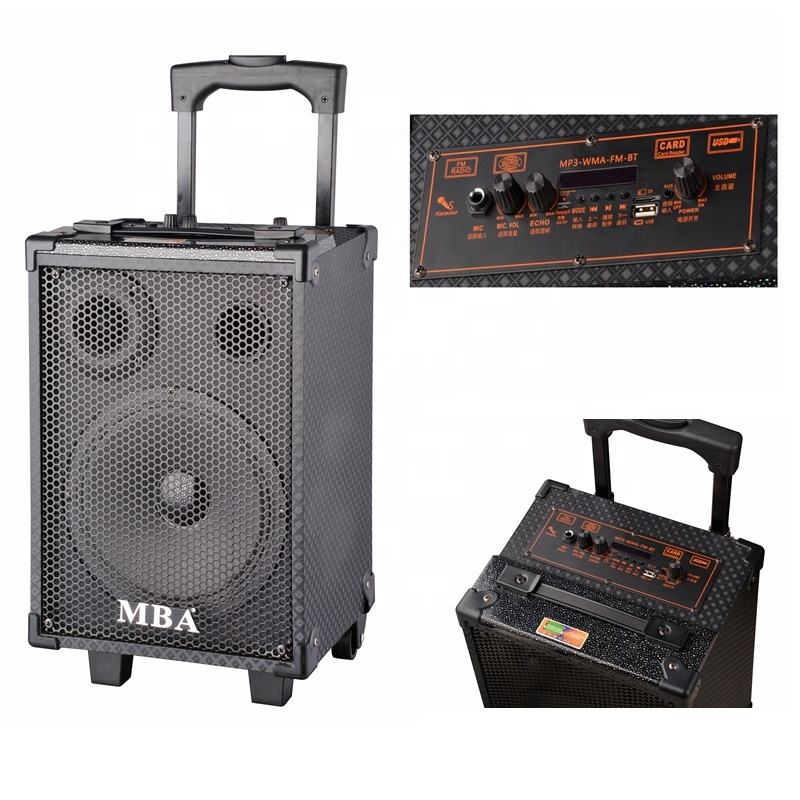 Hot sales portable trolley speaker box with FM radio Q-8V
