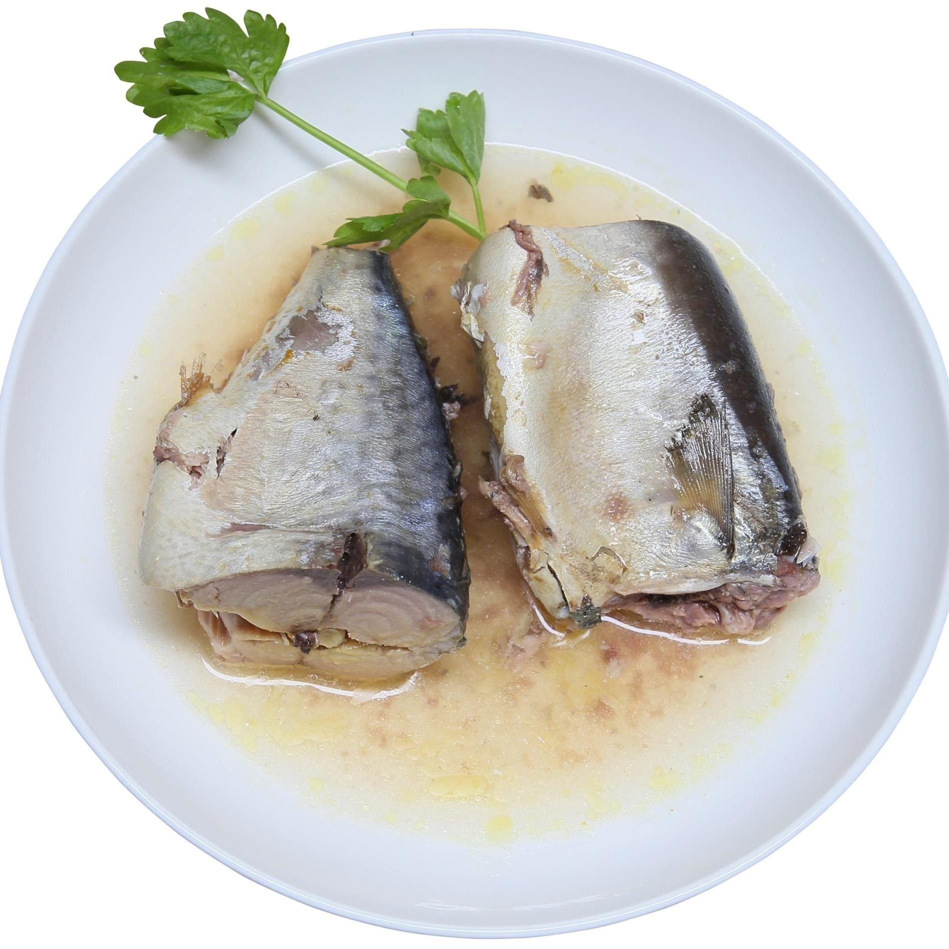 Canned mackerel fish, canned tuna fish, canned Sardine fish