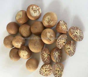Indonesia High Purity Whole / Half Betel Nuts Areca catechu / Areca nuts