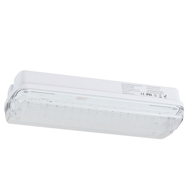 Zhongshan kejie Automatical led emergency lamp KE108/LED/M/NM