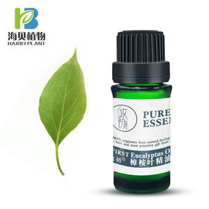 best smelling essential oils Eucalyptus essential oil 80% camphor