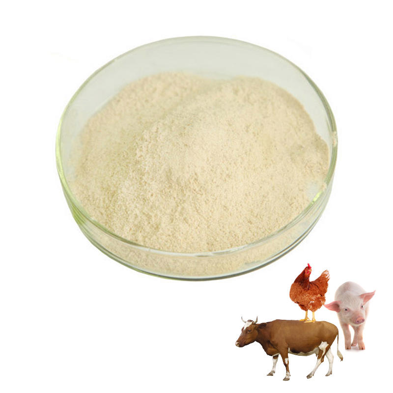 Animal feed additives and premixes complex enzyme