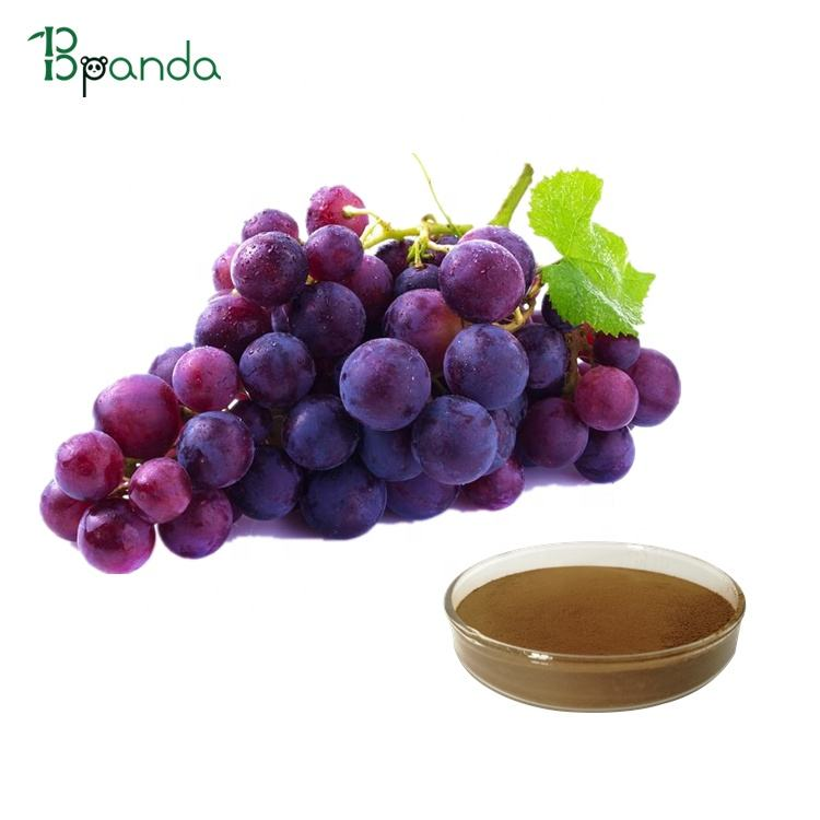100% Pure Grape Seed Extract Powder For Wrinkles