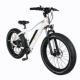 Fat Bike Fat Bike CE Certificate Long Cycling Range 26inch Fat Tire 48V Electric Cycle Mountain Bike