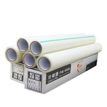 Best Selling Photo Protection Matte Glossy CPP Cold Lamination Film Roll