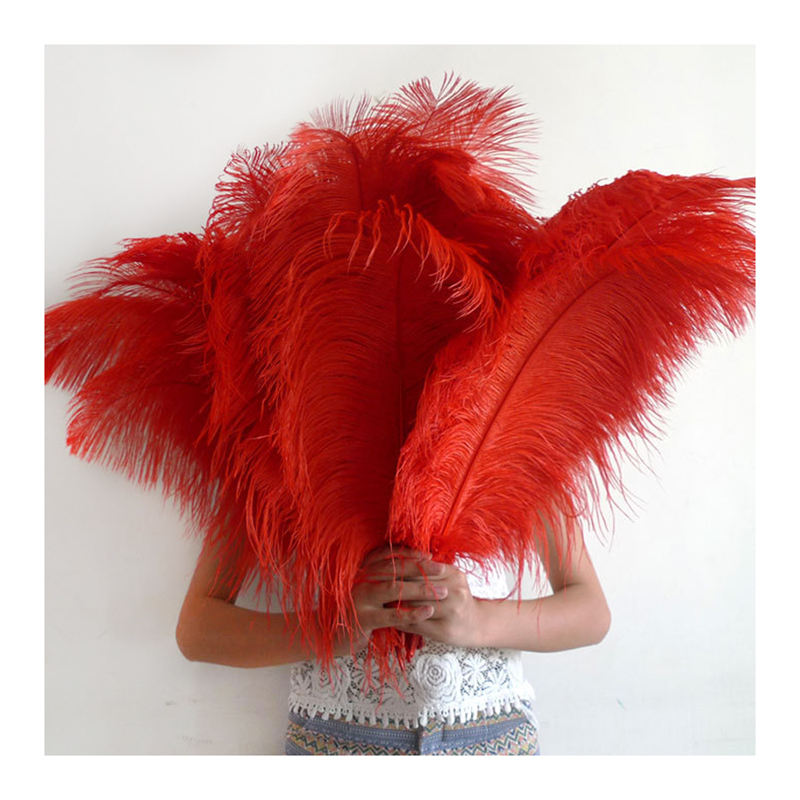 Wholesale Feather Crafts Supplier Promotional Cheap White Ostrich Feather for Sale