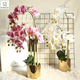 High Quality Real Touch Artificial Latex Butterfly Orchids Flower Silk Cloth Film Orchid For Wedding Party Home Decoration
