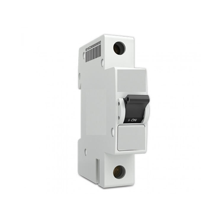 60A Electrical Disconnect Switch 63 A 2Pole Breaker Amp Industrial 63A Auto Recloser Rccb Breaker Earth Leakage <span class=keywords><strong>Gfci</strong></span>