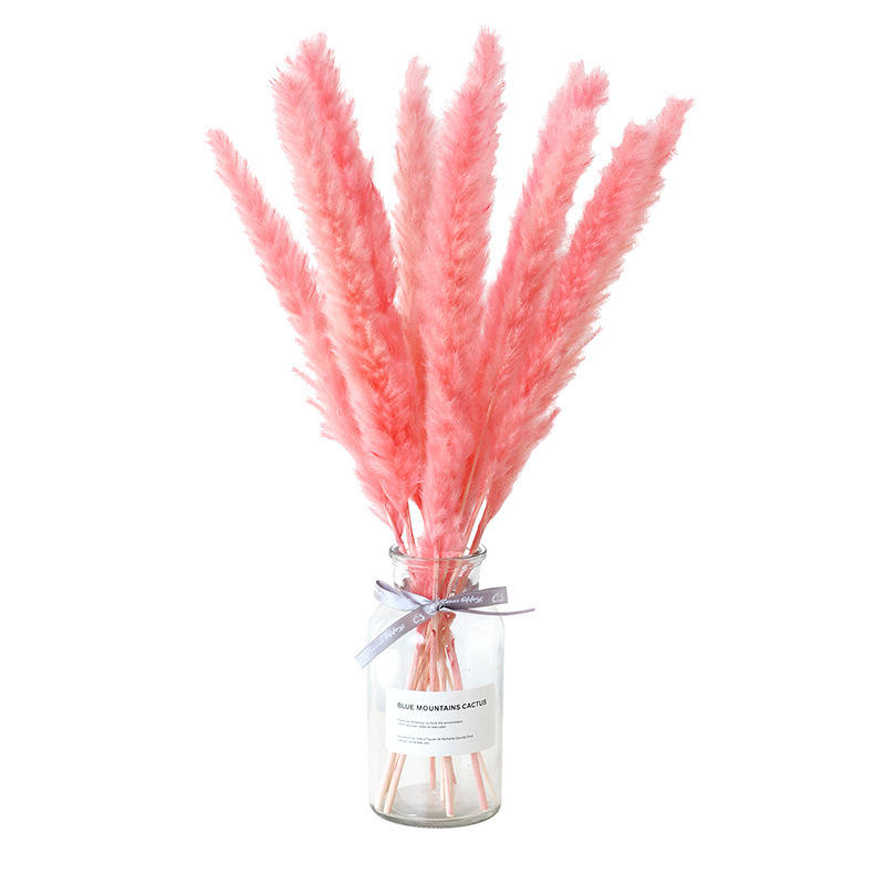 dry flowers arrangement pampas grass yunnan factory wholesale dried flowers for wedding decoration