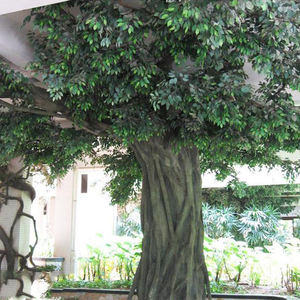 Big Cheap Latest design Large outdoor artificial trees for garden decoration