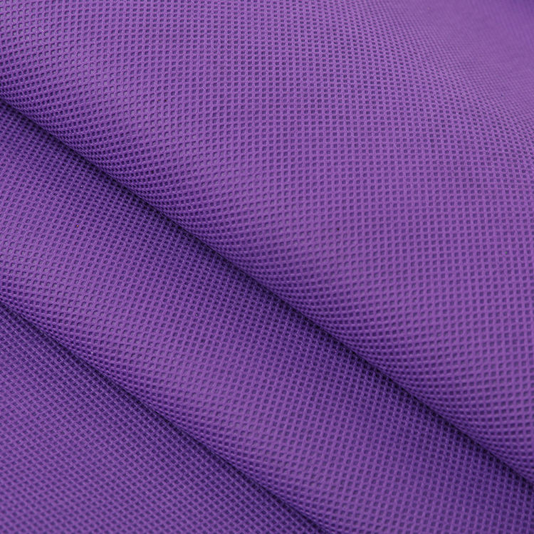 Advanced Equipment 70g Polypropylene Spun Bonded Nonwoven Dyed Colorful Fabric for Furniture