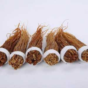 Natural red ginseng in Changbai Mountain of China must nourish blood and beautify