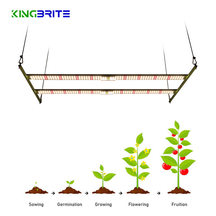 Kingbrite 240W Samsung LM301B with deep red 660 led strip full spectrum for vertical farming