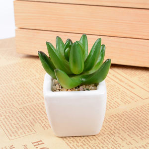Factory direct price lovely artificial succulent potted plant manufacturer