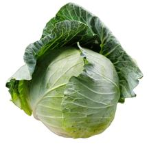 Chinese Fresh Cabbage packing mesh bag top quality Cabbage with cheap price