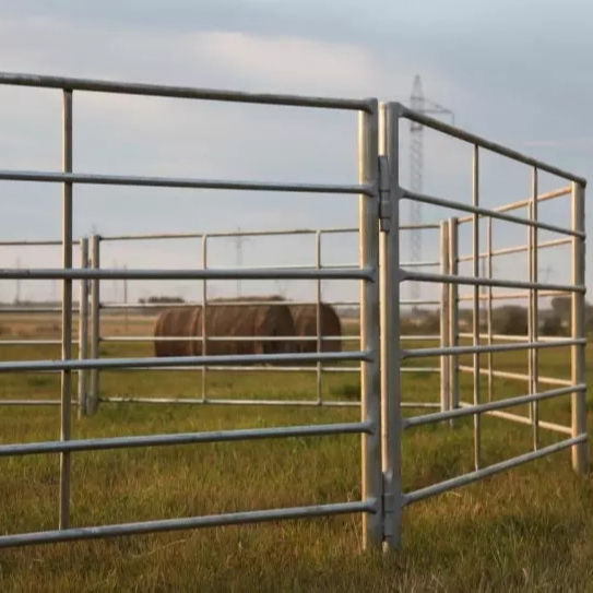 steel sheep fence yard panels goat panels