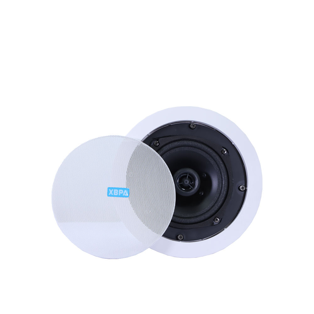 Home theater DJ wireless WIFI Bluetooth Audio alexa portable multimedia smart TV karaoke wall active ceiling amplifier speaker.