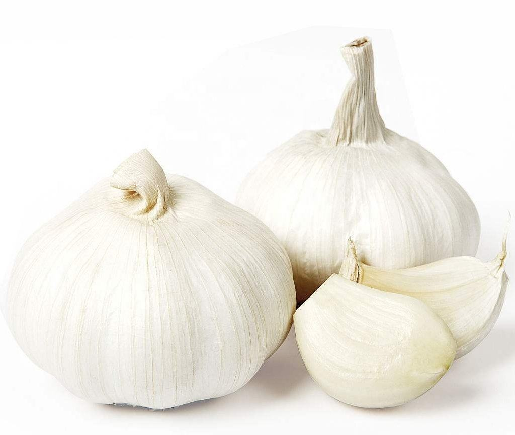 peeled fresh garlic cloves/garlic importers in usa