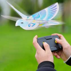 Dowellin RC Bird RC Airplane 2.4 GHz Remote Control E-Bird F
