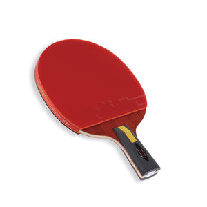 Haitian factory supply Indoor and outdoor table tennis racket