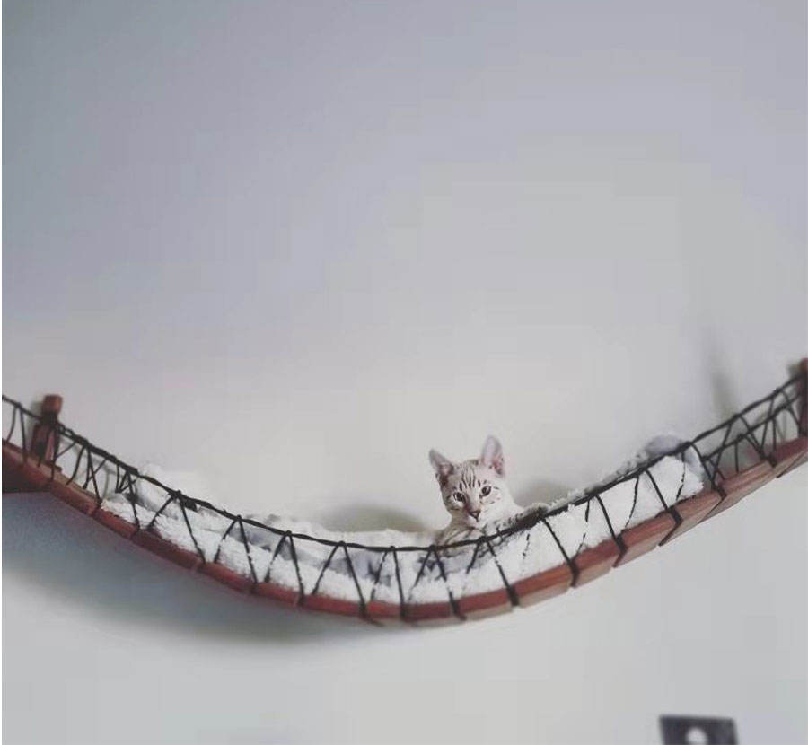 Rope Cat Bridge Climbing Wall Cat Tree Wall Passage Pet Furniture Wooden Climber