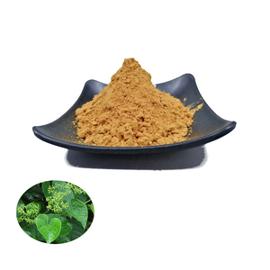 Rongsheng Offer Cissus Quadrangularis Leaf Extract