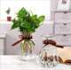 china hot sale decorative flower glass vases for weddings