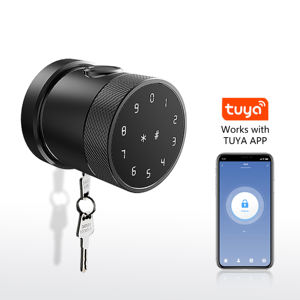 Custom Wireless Digital Electronic Fingerprint Wifi Door Lock with Tuya Smart Life APP