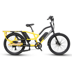 long range double lithium battery food delivery electric cargo bike