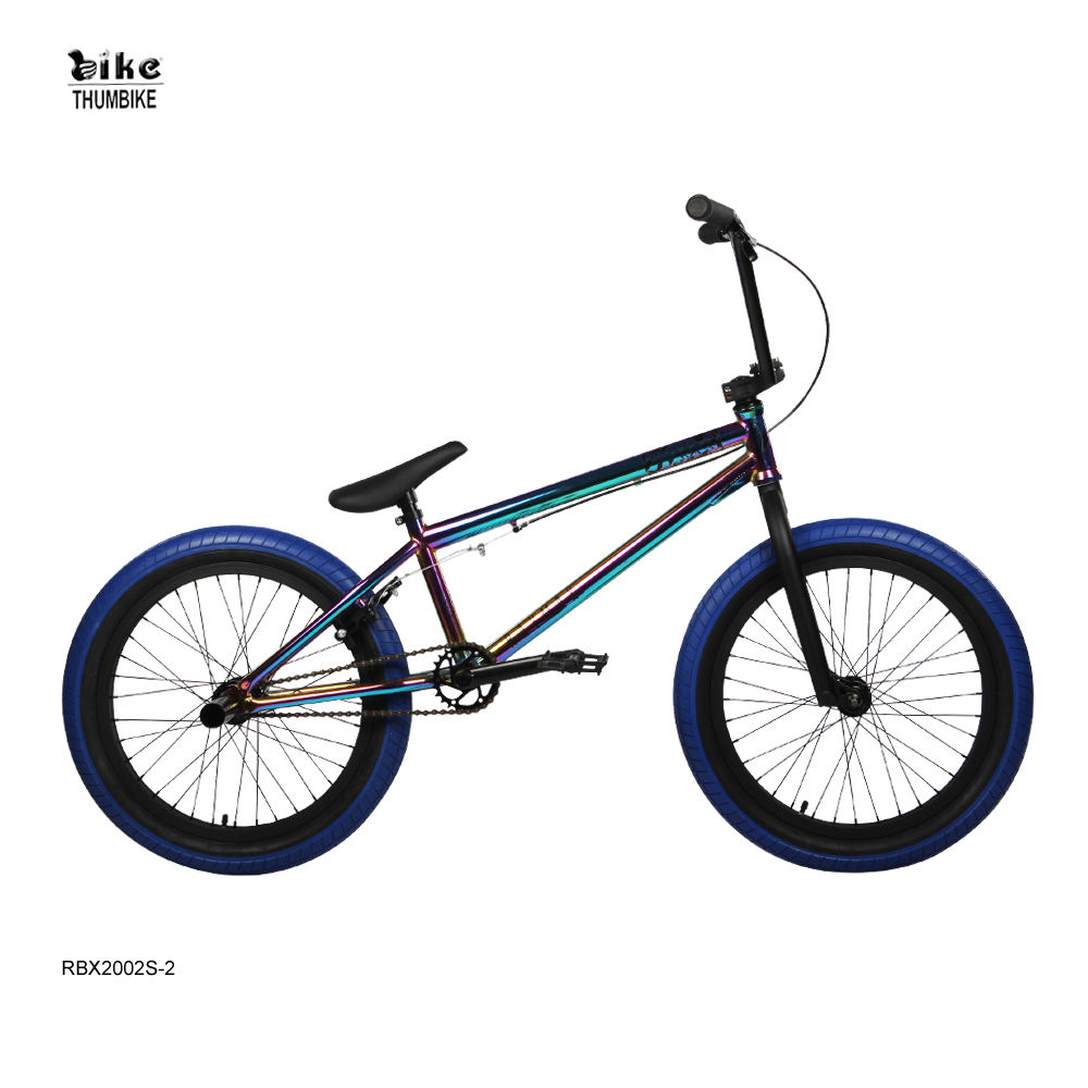 RAYMAX HI-Ten Steel Bicycle 20 Inch Oil Slick Bmx Bike