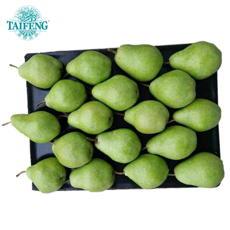 8kg carton Red Flavor pear 2020