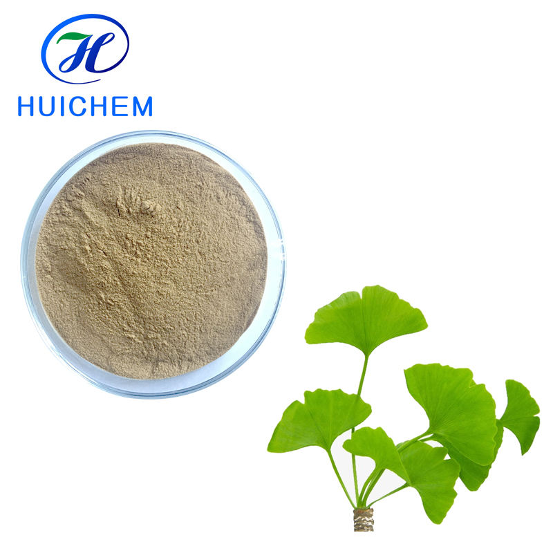 Nutritional supplements Ginko Flavones Ginkgo Biloba Leaves Extract power