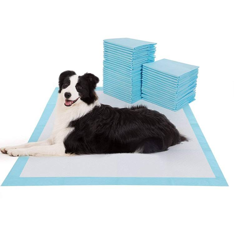 Free sample cheap price 45x 60cm PE backsheet puppy toilet sheet dog pee training urine pad for pet