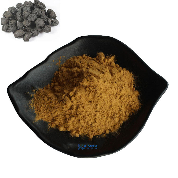 100% High Quality Pure black plum extract Powder