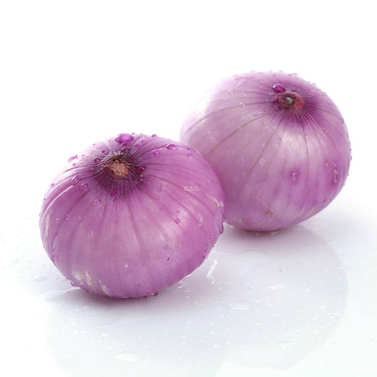 china market price fresh red big onion/onion seeds selling