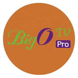 BigO PRO IPTV Swedish Arabic Dutch Spain Europe Super Panel TV For Android TV Box APK M3U No APP Included