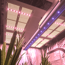 50W single  bar UV IR led grow light, Full Spectrum LED Grow Light Hydroponic Indoor Plants Veg and Flower
