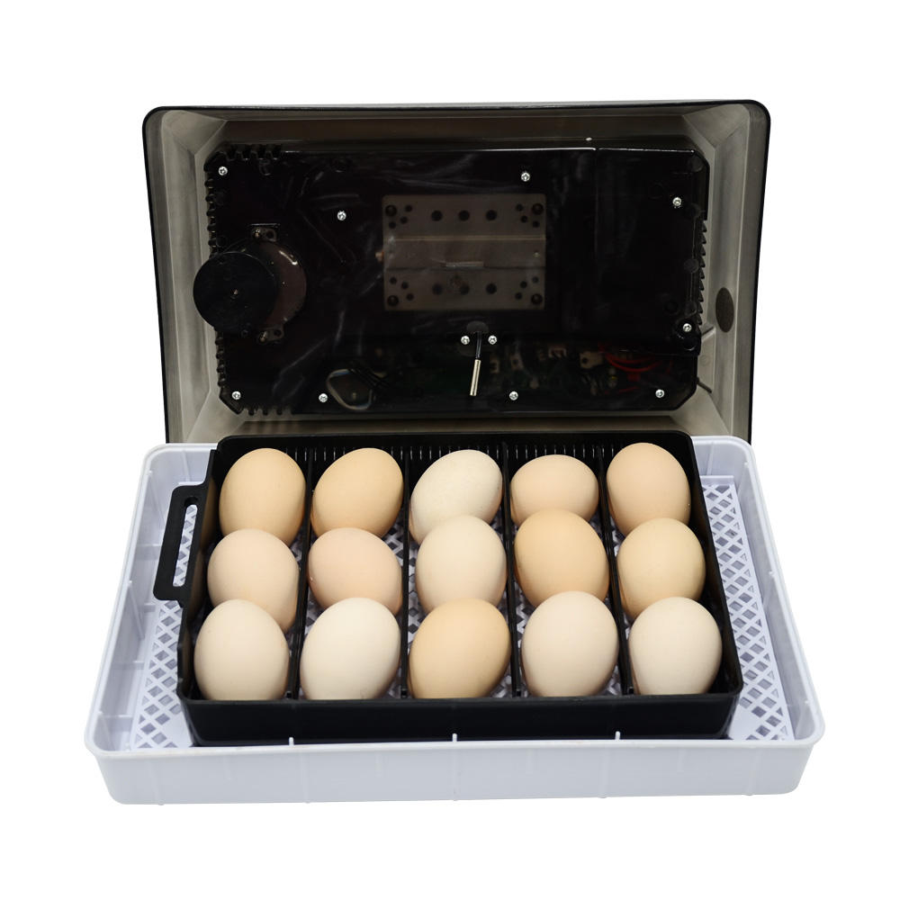 Automatic Mini Incubators Hatching Eggs Machine Blue Color 15 Eggs