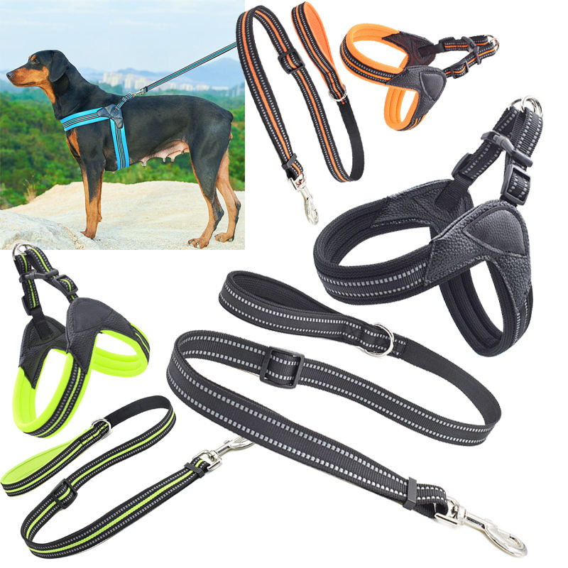 2020 Outdoor Adjustable Heavy Duty Nylon Tactical Pet Dog Leather Collar With Metal D Ring And Buckle 3 Sizes