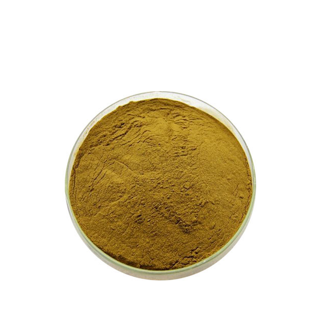 Competitive price fermented papaya leaf extract powder papaya leaf/seed extract