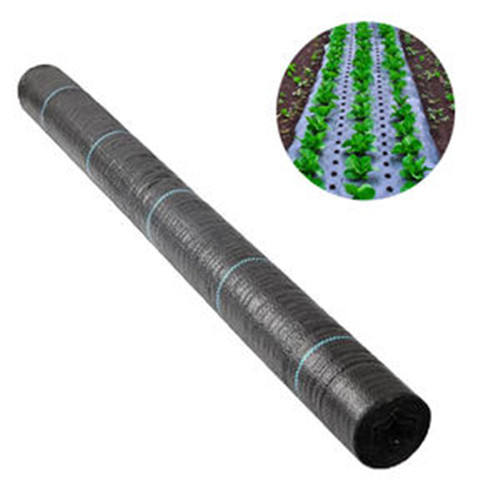 Ground cover silt fence black pp fabric roll for agriculture ,landscaping weed control mat