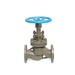 High Quality Stainless Steel Water Control Pn16 Wcb Globe Valve