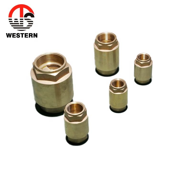 Brass Vertical Spring Check Valve