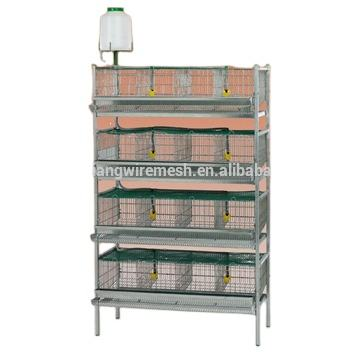 Hot Sale High Quality Automatic Quail Cage and Quail Farming Equipment