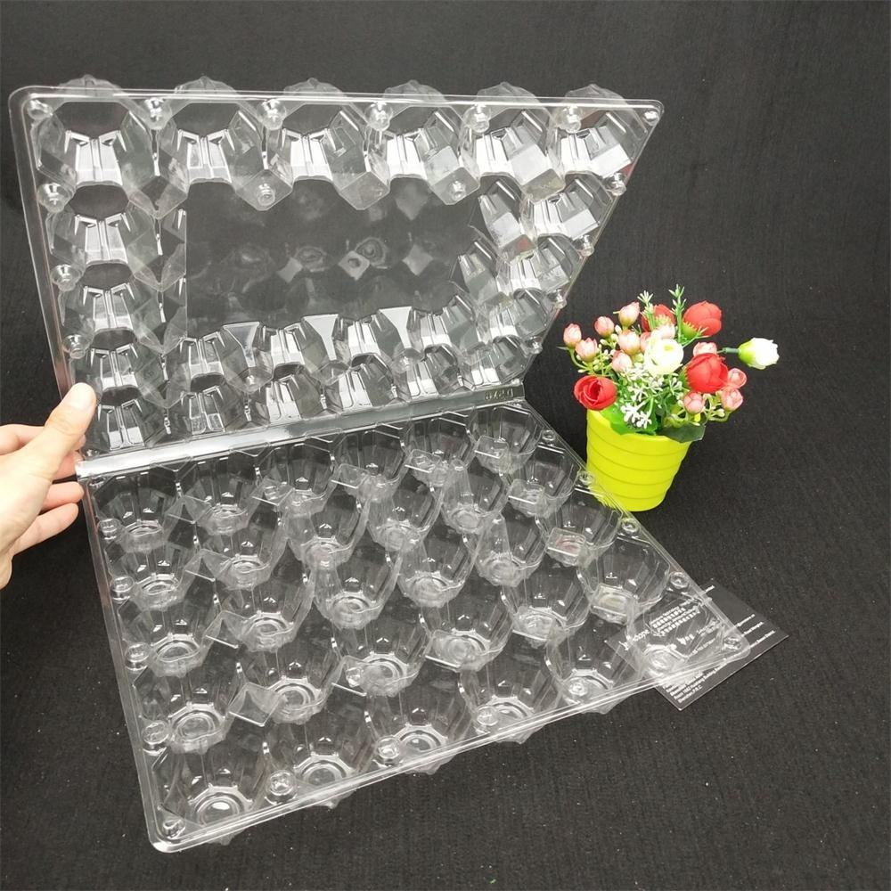 Clear Plate Reusable Crate Plastic Egg Tray