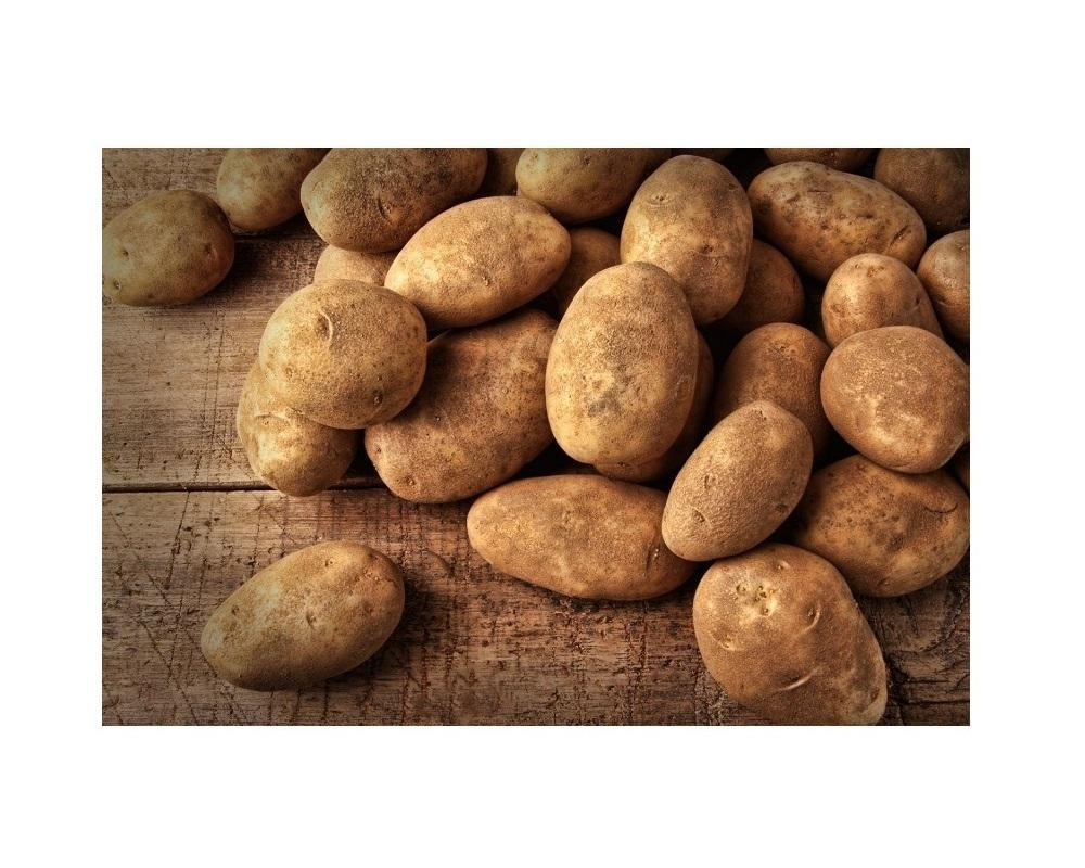New Harvest High Quality Potato from Vietnam Farm! Fresh Sweet Potato Wholesale Price! EU Export Vegetable Potato