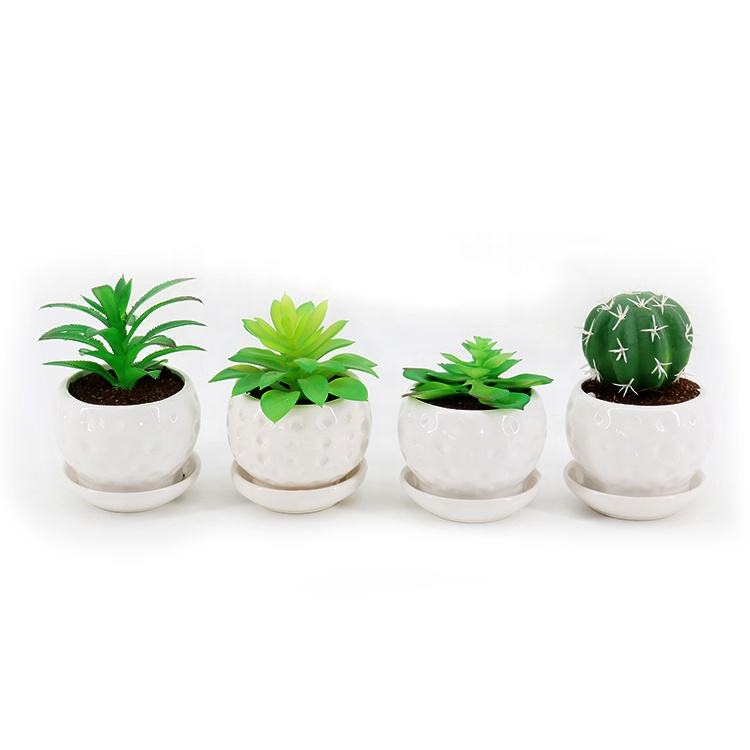 Modern plastic Green Grass Prickly pear Cactus mini faux fake potted artificial succulent plants artificial with ceramic pot