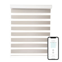 STARDECO New indoor day and night zebra shade blackout motorized window blinds china window blinds smart motor sun curtain