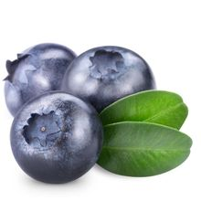 DSF IQF Fresh Blueberry Organic Fruit For Sale